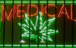 Medical Marijuana Can Be Legalized in NY State