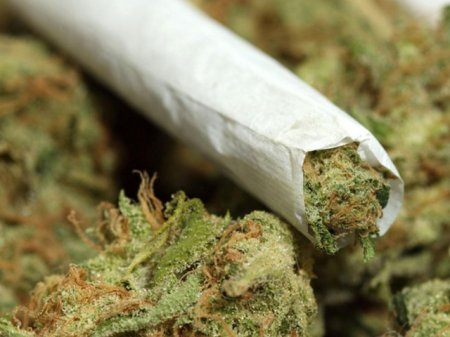 New York Senator Suggests Marijuana Decriminalization