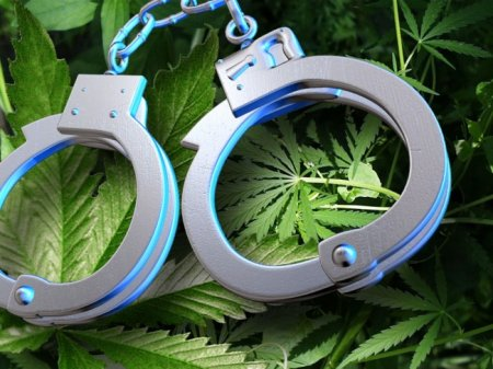 61% of New Jersey Residents Support Marijuana Decriminalization