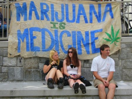 Florida Medical Marijuana Issue Could Be Placed on the 2014 Ballot