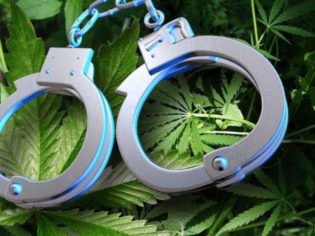 Marijuana Decriminalization in Vermont